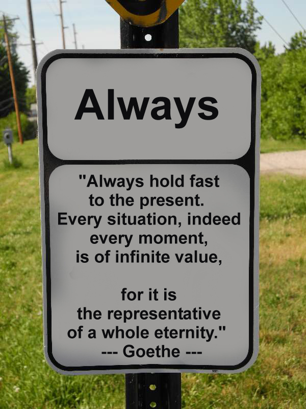 "Goethe - ""Always hold fast to the present. Every situation, indeed every moment, is of infinite value, for it is the representative of the whole eternity."""
